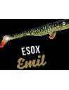 LMAB Drunk Bait 16 cm, Fb.: Esox Emil