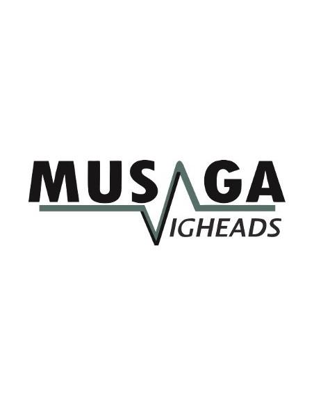 Musaga